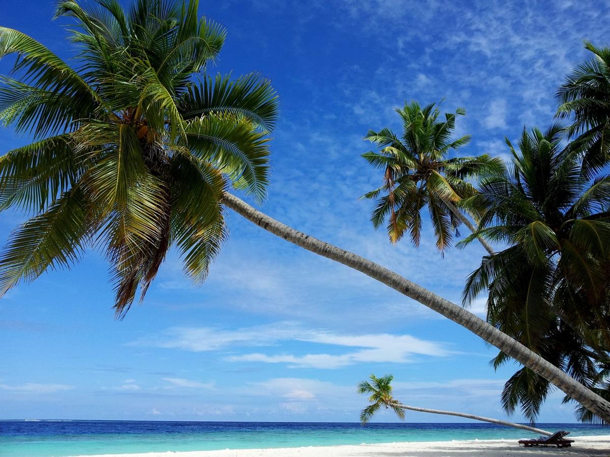 Playa en Maldivas. Viaje de novios . Tentaciones de Japón y Maldivas. Luna de miel. Viloria Grandes Viajes
