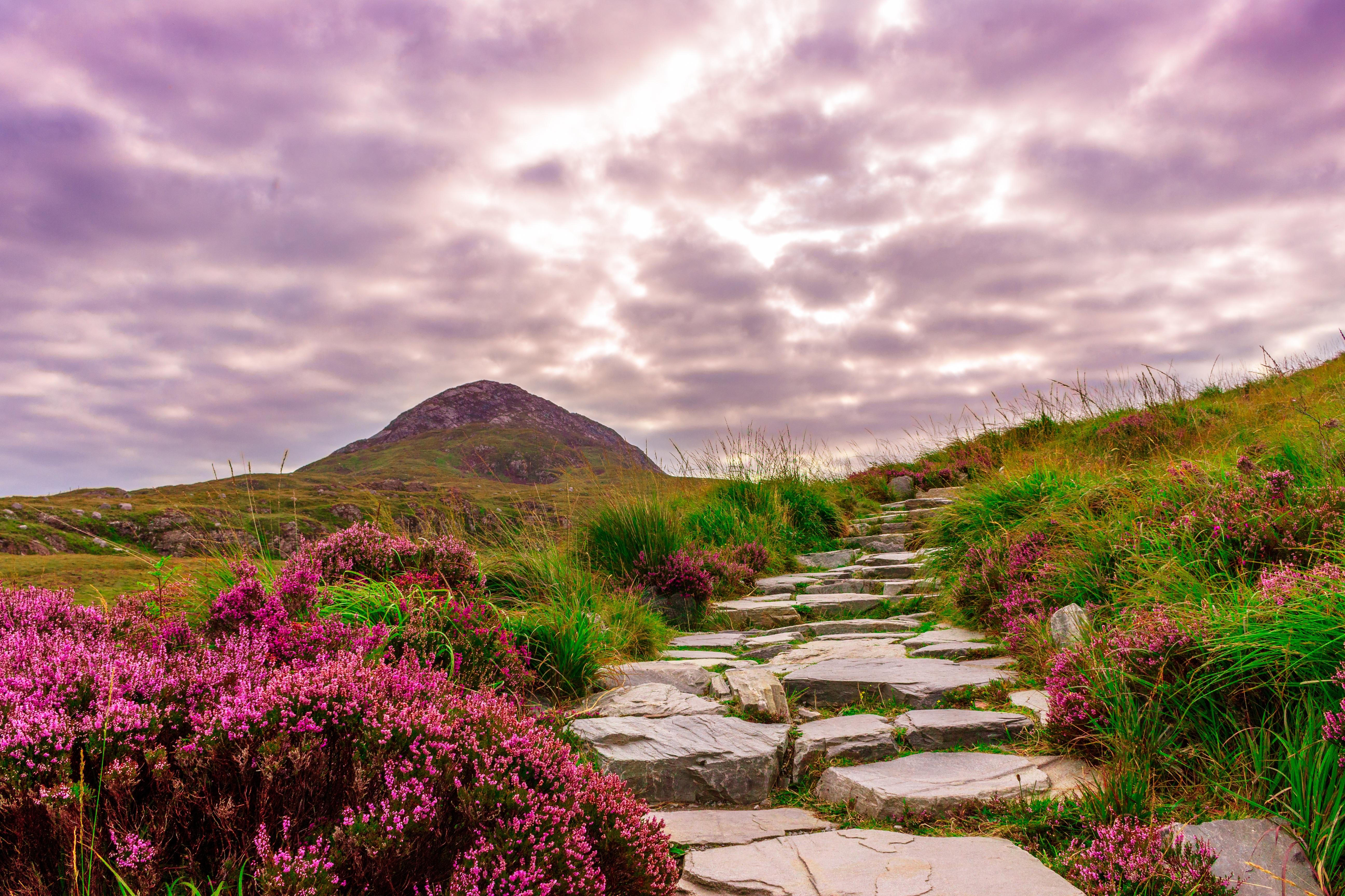 Rural Irlanda