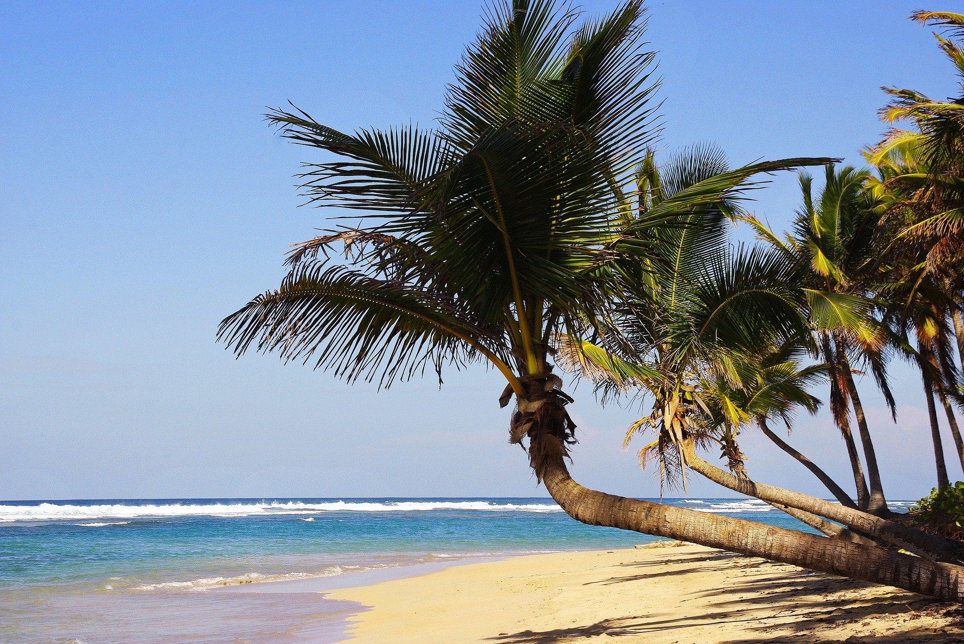 Viaje a Playa Bávaro